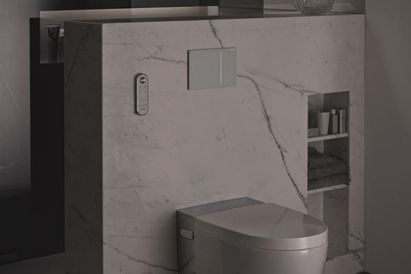Wellness-toilet